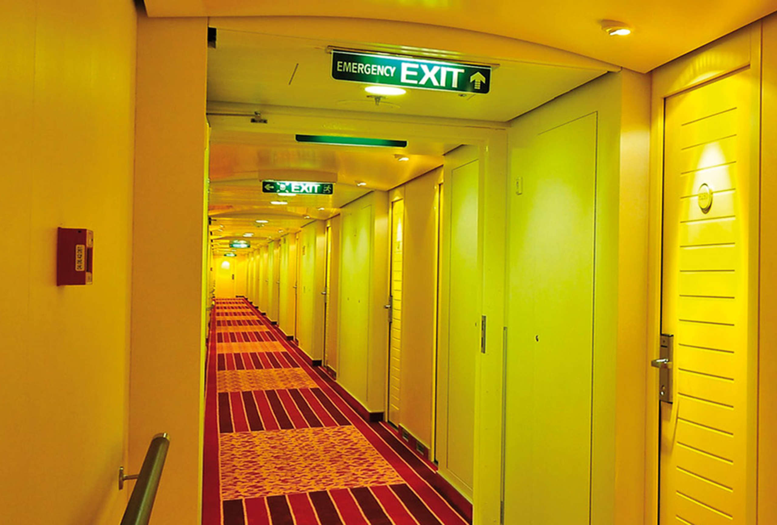 emergency & Exit light